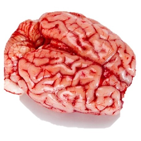Cervelle d 39 agneau - Cuisiner la cervelle d agneau ...